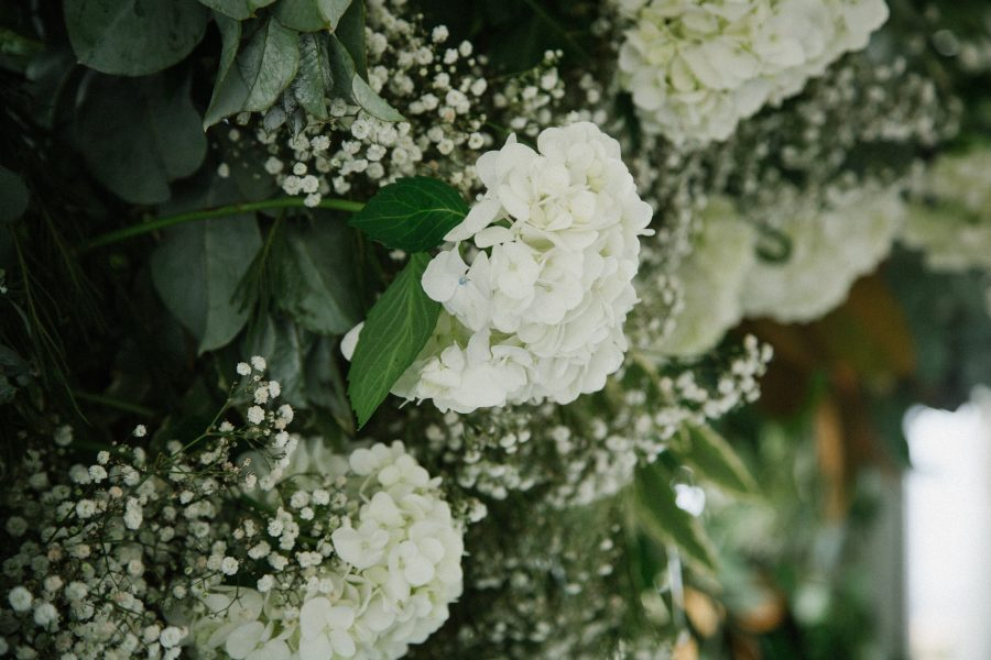 Tanya-Brad-Wedding-102